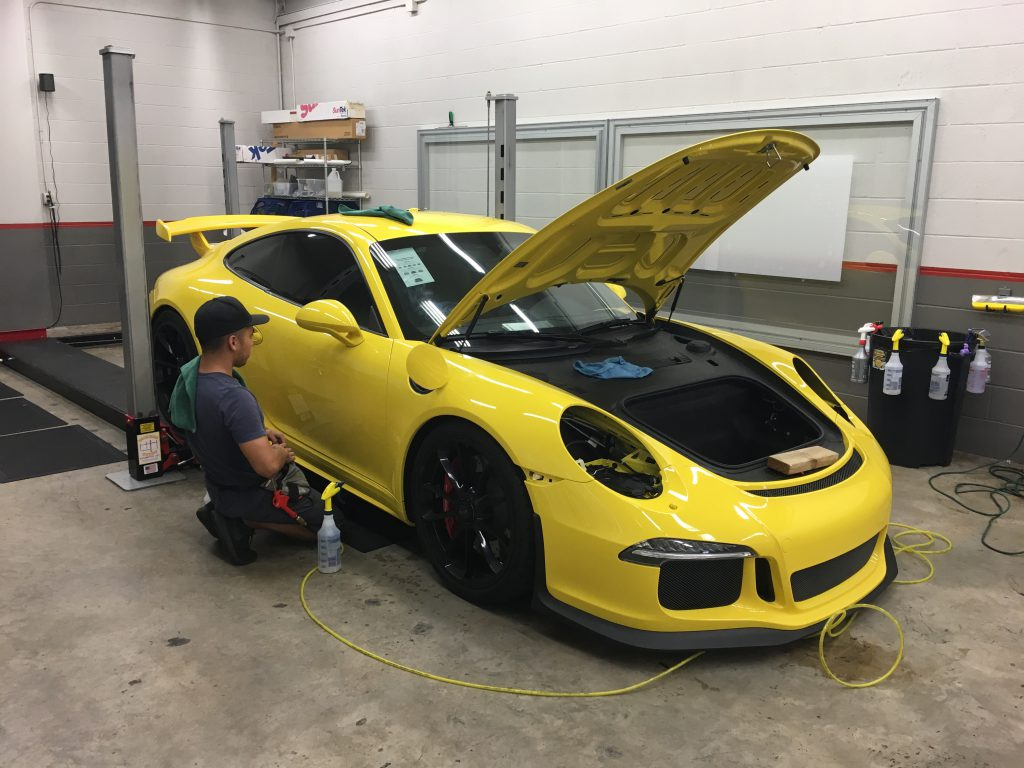 Paint protections process